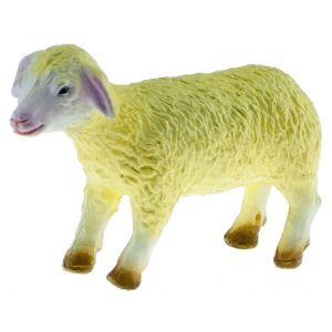 Sheep Medium